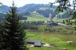 Alpe Moos